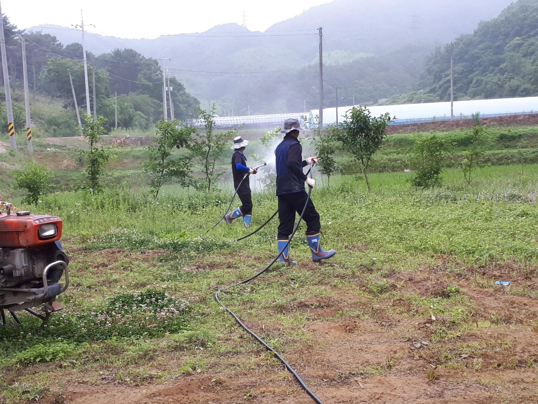 과수농가 대상 돌발해충 방제약제 지원