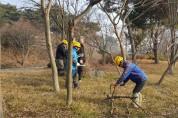 산림,공원녹지 분야 기간제 근로자 모집...산불, 숲가꾸기 등 5개 분야 153명