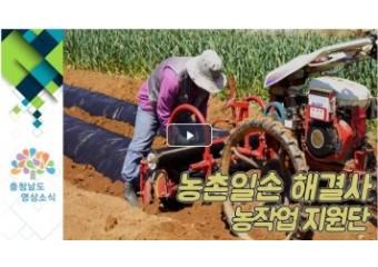 맞춤형 농작업 지원단 운영